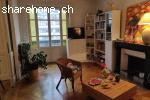 Flat sharing in big and beautiful apartment in Eaux-Vives